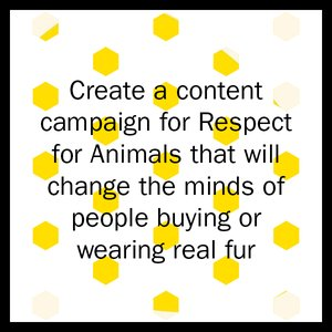 Respect for Animals Brief